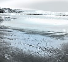 Silver Seascape II by Igor Shrayer