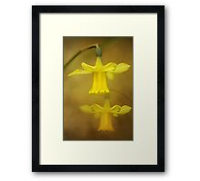 Golden lanterns Framed Print