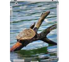 Enjoying The Sunshine iPad Case/Skin