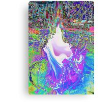 SPLASH 1 Canvas Print