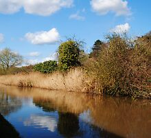 Worcester to Birmingham Canal by Lissywitch