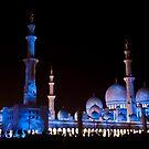 Sheik Zaid Mosque  by Tarek Solh