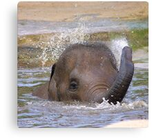 Playful Water Baby Canvas Print