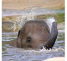 Playful Water Baby Photographic Print