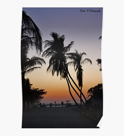 Sunset with Palm Trees! Poster