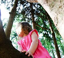 Sunny Days Are For Climbing Trees in Pink Dresses by Jenny Ryan
