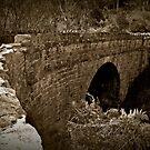 Deep Creek Stone Arch Bridge by Barb Leopold