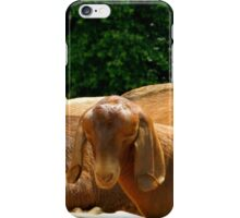 The Bobsey Twins........down on the farm     ^ iPhone Case/Skin