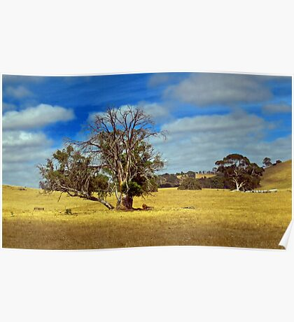 Golden Landscape Poster