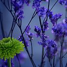Lost In A Purple Forest by Gretchen Dunham