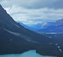 View from Bow Summit 1 by ArianaMurphy