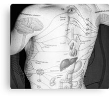 Body Maps - Body - Back Canvas Print