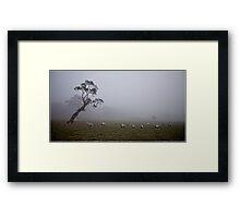 Foggy Morning, Mt Barker Summit Framed Print