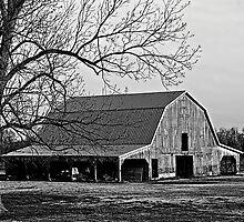 Oklahoma Barn by Mitchell Tillison