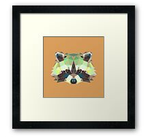 Geometric Raccoon Framed Print