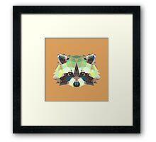Geometric Raccoon Framed Print