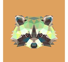 Geometric Raccoon Photographic Print