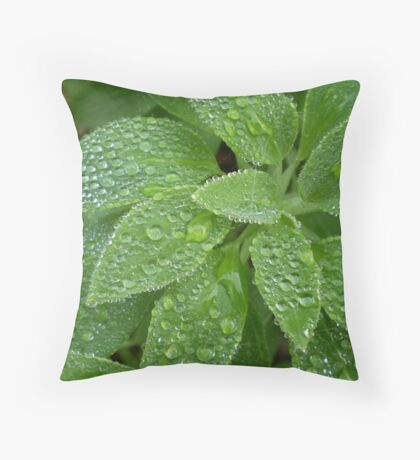 Green and Dewdrops Throw Pillow