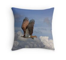 Fly By! Throw Pillow