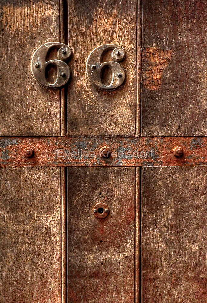6 6 (7) by Evelina Kremsdorf