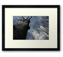 The Two Towers (Mordor and Isengard ;P) Framed Print