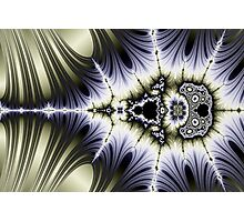 Mandelbrots Lace and Lines of Flux Photographic Print