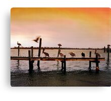 Pelicans on Pier - North Carolina Canvas Print