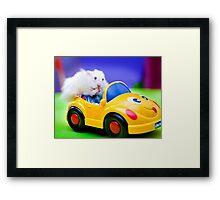 driving hamster Framed Print