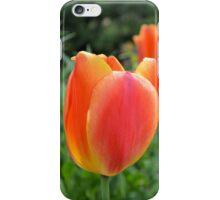 Two Tone Orange Tulips iPhone Case/Skin
