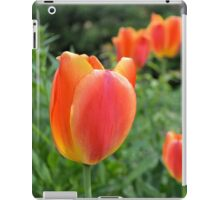 Two Tone Orange Tulips iPad Case/Skin