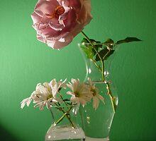 Rosie Spring Colors by Christina Spiegeland