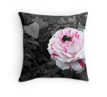 Bee on rose Throw Pillow
