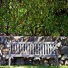 Just a bench. by therkd