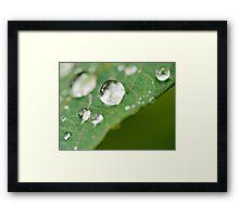 Perfect Droplet Globes Framed Print