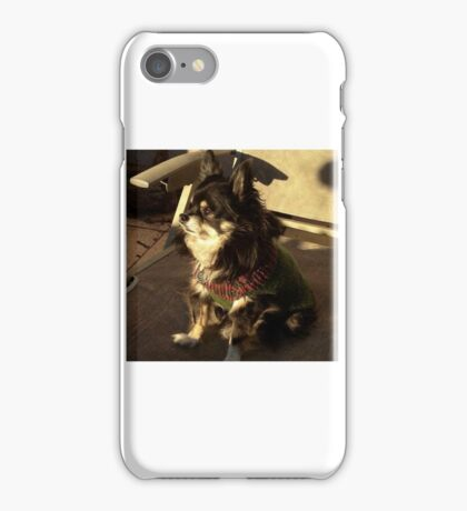 Chili the Chihuahua iPhone Case/Skin