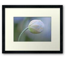 Gentle Zen Framed Print