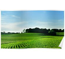 Etchings in the Rural Landscape Poster