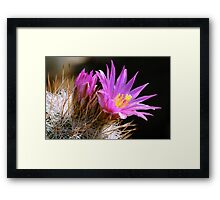 Inside everything there is good. Framed Print