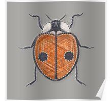 Ladybug - Orange Poster