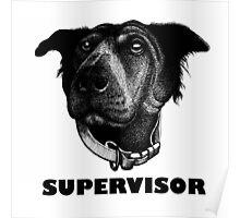 RALPH SUPERVISOR Poster