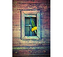 Yellow flowers on door Photographic Print