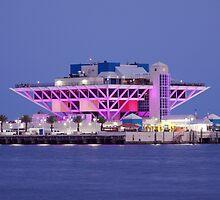 St. Petersburg Pier - Pink by Laura Sweeney
