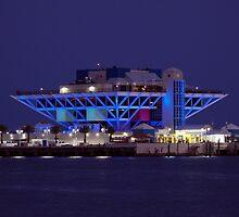St. Petersburg Pier Blue by Laura Sweeney