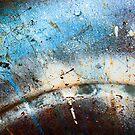 Northern Lights by Lynne Prestebak