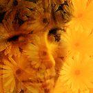 Daisy by Ivy Izzard