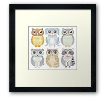 Owls, Dogs, Cat, Raccoon Framed Print