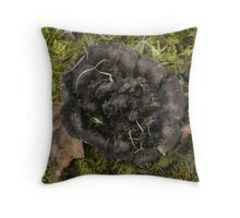 Petrified Fungus Throw Pillow