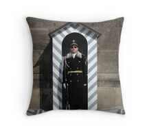 Keeping guard at Prague Castle Throw Pillow