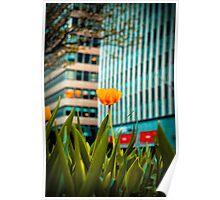 sidewalk flower Poster