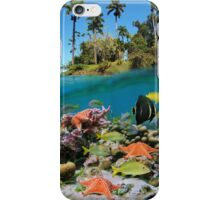 Tropical island and colorful underwater marin life iPhone Case/Skin
